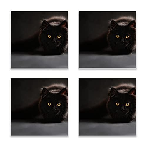 Reebos Juego de 4 posavasos para bebidas, gato negro maine coon cuadrado de cerámica, base de corcho, alfombrilla de protección para tazas y tazas, oficina, cocina