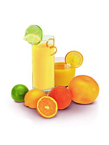 MOULINEX PRESSE AGRUMES ELECTRIQUE VITAPRESS 25W Jus Vitamine C Orange Citron Pamplemousse Capacité 0,6L Sélecteur de Pulpe Blanc et Gris Foncé PC300B10