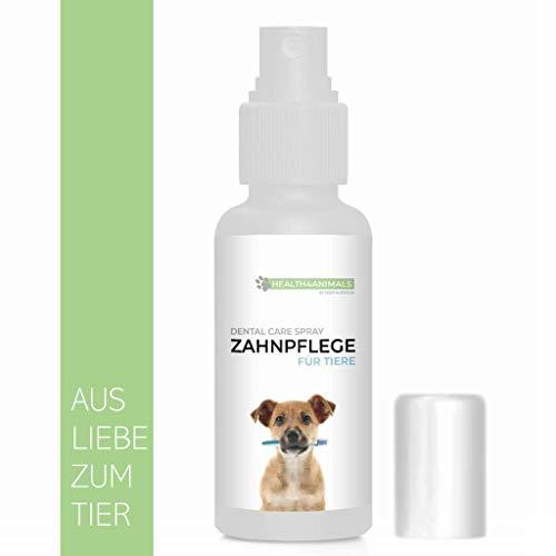 West Nutrition Health4Animals Dental Care Spray - zur Unterstützung der Zahnpflege und Zahnreinigung für Hunde und Katzen – Probleme mit Mundgeruch, Zahnfleischentzündung, Zahnfleisch