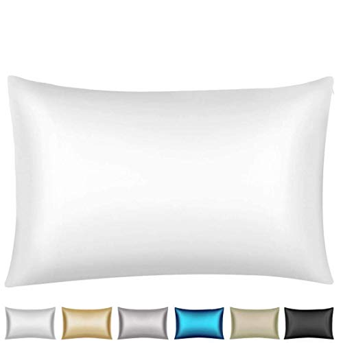 Wonwo 25 Momme Silk Pillowcase, Both Sides 100% Natural Mulberry Silk Pillow Covers Cases Queen Size for Hair and Skin with Hidden Zipper, 1PC, Snow White
