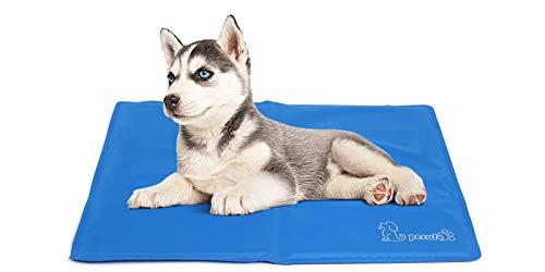 Pecute Tappetino raffreddamento cani Medio 65x50 cm - gel non tossico - sistema di auto raffreddamento - perfetto per cani e gatti in estate