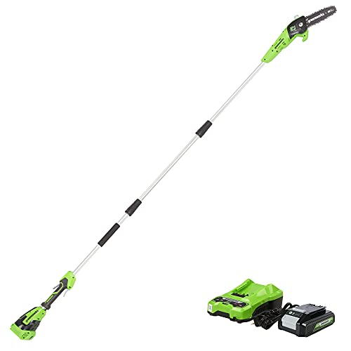 Greenworks PS24B210 8-Inch 24V Cordless Pole Saw,...