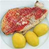 Today Gourmet Foods of NC - Red Snapper -6/8oz (5lb Pkg)