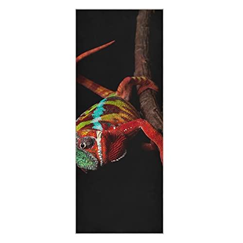 Toallas para esterilla de yoga Primer plano de piel descolorida de camaleón Lagarto Funda para esterilla de yoga Alfombrilla de yoga antideslizante súper suave Antideslizante Adecuado para