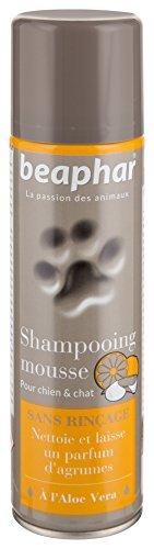 BEAPHAR – Shampoing mousse sans rinçage à l Aloe Vera pour chien et chat – Nettoie, nourrit, protège et parfume le poil aux agrumes – Pratique et facile à utiliser – Flacon 250 ml