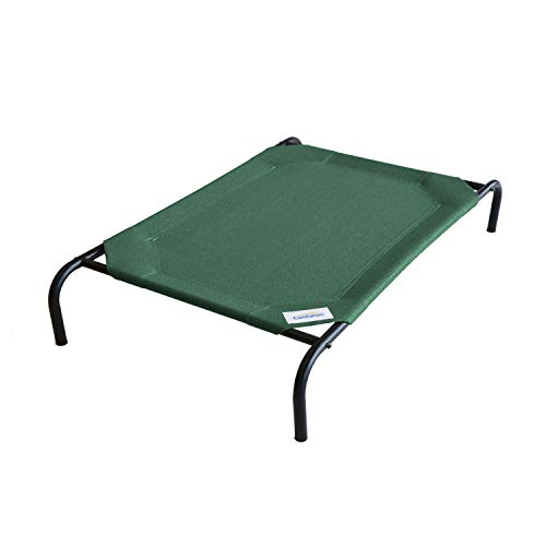 Elevated Indoor/Outdoor Pet Cot Color: Brunswick Green, Size: Large...