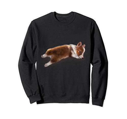 Süßer Hund   Corgi Sweatshirt