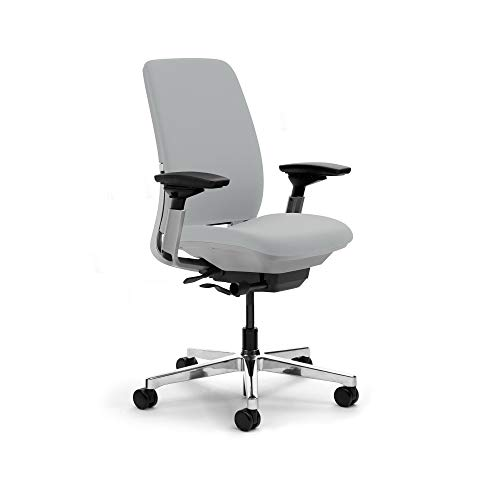 Steelcase Amia Task Chair: Platinum Frame/Base - 4 Way Adjustable Arms - Standard Carpet Casters