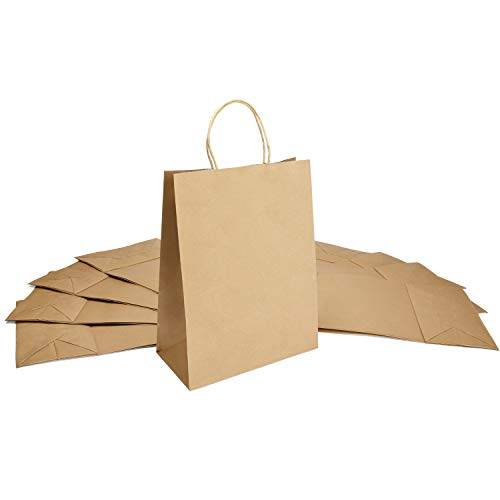 Halulu(TM) Natural Kraft Paper Bags, Shopping Bags - Brown Merchandise Retail Bags - 8