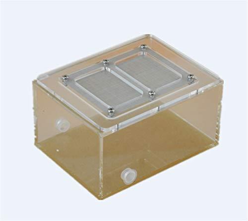 EPMEA0 1PC acrílico terrarios con Tapa Fina Malla Transpirable orugas Caja Adecuada for Hormigas arañas mayoría de los Reptiles 12 * 6 * 9cm