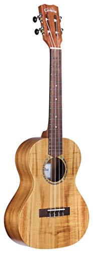 Cordoba Guitars Ukuleles, Mandolins & Banjos - Best Reviews Tips
