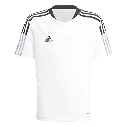 adidas Camisetas Modelo TIRO21 TR JSY Y Marca