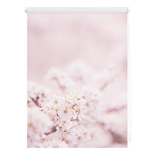 Lichtblick KRT.090.150.331 Rollo Klemmfix, ohne Bohren, Blickdicht, Kirschblüten - Rosa Weiß 90 cm x 150 cm (B x L)