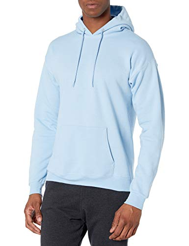 Hanes mens Pullover Ecosmart Fleece Hooded Sweatshirt,Light Blue,Large