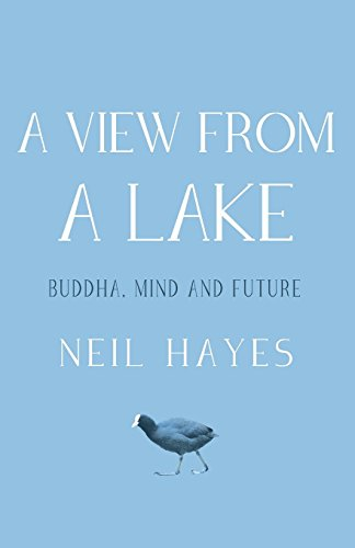 A View from a Lake: Buddha, Mind and Future by Neil Hayes (26-Feb-2015) Paperback