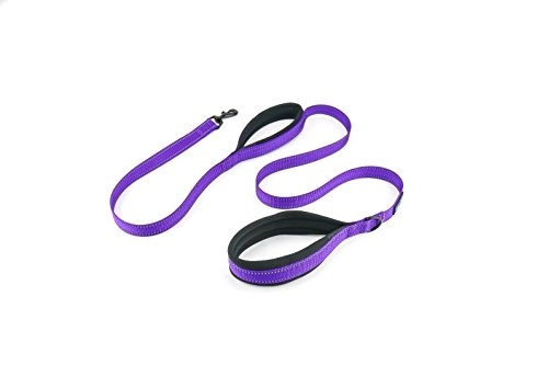 Waggin Tails Soft & Thick 5FT Double Handle Leash with Neoprene Padded Handle for Small to Medium Dog (Vibrant Purple)
