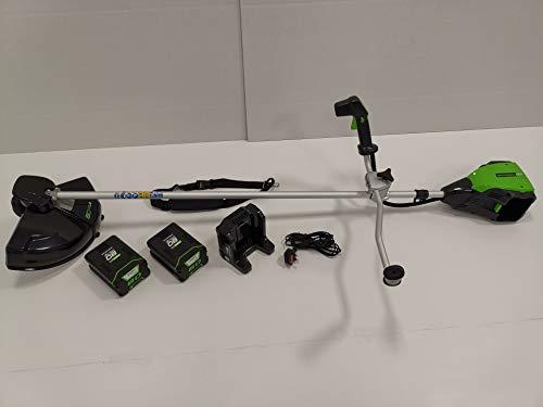 Greenworks Tools 80V Akku Freischneider/Rasentrimmer mit Bikergriff +2x2Ah Akku + Ladegerät (1301707VC)