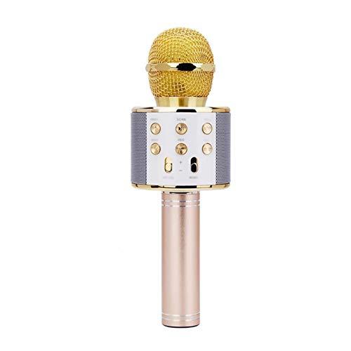 Bluetooth Karaoke KTV Música Cantando Micrófono Altavoz Inicio Micrófono Karaoke   (Color : Golden)