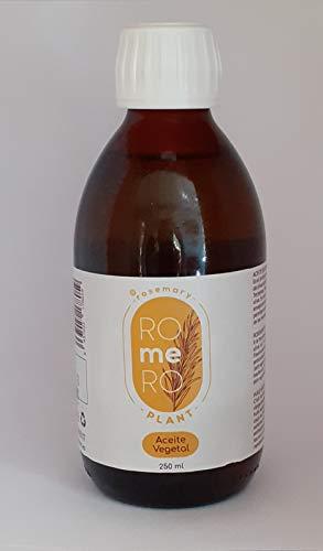 rosemary ROmeRO plant. Aceite vegetal de romero 250 ml. Acción anti-edad, antiseptico y antibiótico.