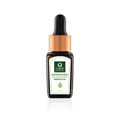 Rosemary Essential Oil By Organic Harvest | Skin Care Essential Oils Rosemary | Organic Rosemary Essential Oil | Usda Certified Essential Oil | Rosemary Oil for Aromatherapy - 10 Ml