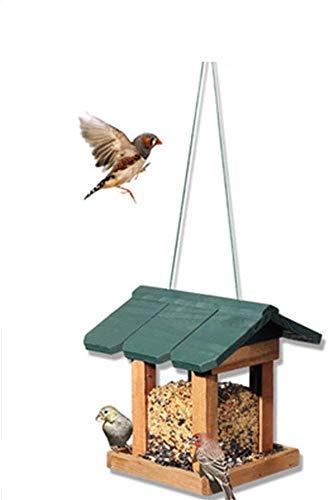 Mangeoire for oiseaux sauvages Nettoyage facile Recharges Mangeoire d'oiseaux Table autoportant traditionnelles oiseaux en bois résistant aux intempéries Feeder Maison design for l'extérieur Hanging D