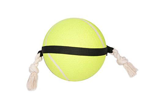Flamingo Action Balle de Tennis pour Chien 22 cm