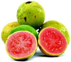 How to eat raw guava fruit how to eat guava fruit buy fresh pink flesh guavas ccuart Gallery