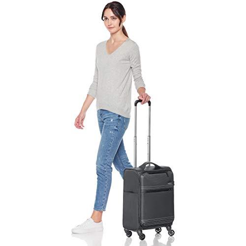 AmazonBasics Lightweight Luggage, Softside Spinner Travel Suitcase with Wheels - 22 Inch, Grey