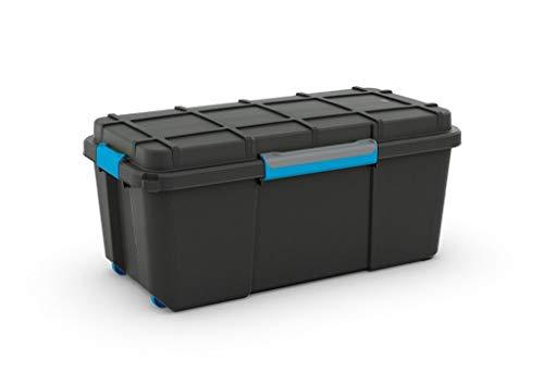 Curver Caja Ordenacion Scuba Box, Negro y Azul, L