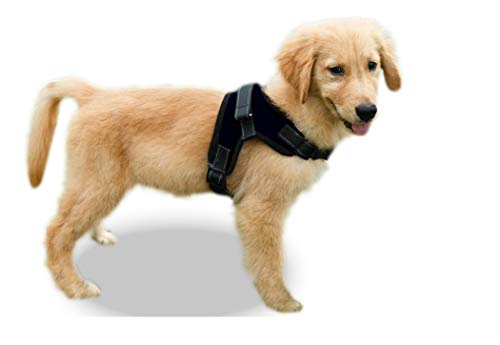 Copatchy No Pull Reflective Adjustable Dog Harness...