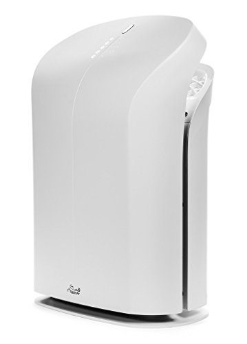 Rabbit Air BioGS 2.0 Ultra Quiet HEPA Air Purifier (SPA-625A White)