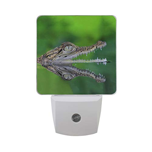 AOTISO Krokodilkop in water op groen Jungle Rainforest Nachtlampje Auto Sensor Nachtlampje Plug in Indoor
