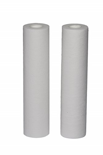 EcoPure EPW2B Whole House Replacement Filter, White