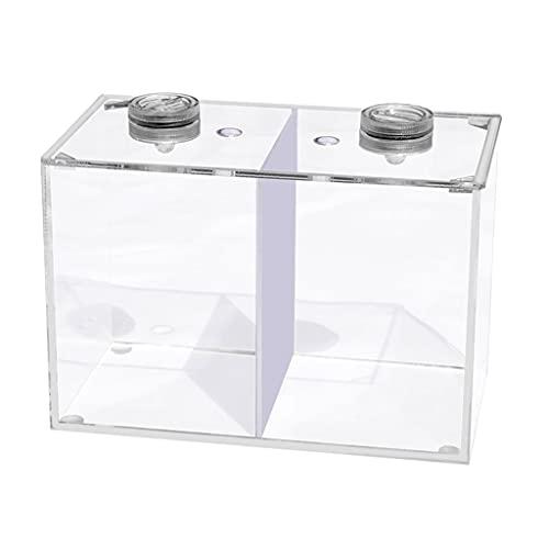 DALIZHAI777 Aquarium Kreative LED-Lichtkämpfe Fisch Doppelgitter-Tank Kleiner Zierfisch-Tank Büro Haushaltstisch Einfacher Fischtank Fischglas