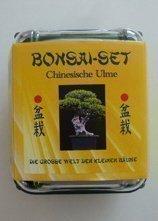 Tropica - Bonsai-Set - Chinesische Ulme mit Samen, Keramikschale, Broschüre und Gewächshaus