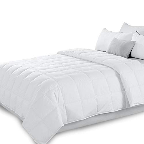 Honglimeiwujindian Duvet Cover Quilted Down Comforter White Goose Down And Feather Filling All Season Duvet Insert Or Stand Alone Kids Girls Double Bed (Color : White, Size : 150x200cm)