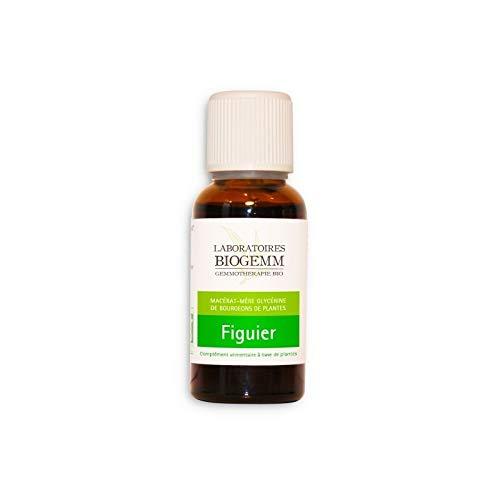 Figuier Bio Bourgeon - Flacon 30ml Biogemm
