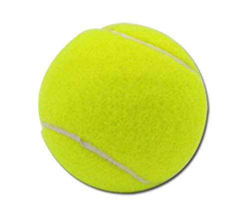 N-B Lanciatore di Tennis per Animali Palla Macchina da Servizio per Cani Palla Piccola 5 cm Macchina per lanciare Palline da Tennis Elastica Tennis 10 Pezzi