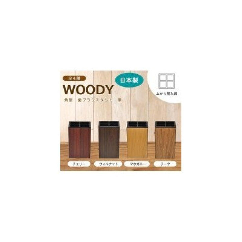 シェフ共同選択維持する日本製 WOODY ウッディ 角型 歯ブラシスタンド 黒 チーク?13-450369( 画像はイメージ画像です お届けの商品はチーク?13-450369のみとなります)