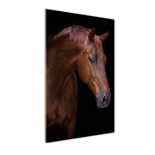Tulup Impresión en Vidrio - 50x100cm - Cuadro sobre Vidrio - Pinturas en Vidrio - Cuadro en Vidrio - Impresiones sobre Vidrio - Cuadro de Cristal - Animales - Marrón - Retrato De Un Caballo