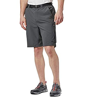 Columbia Men's Silver Ridge Cargo Short, Grill, 32x12