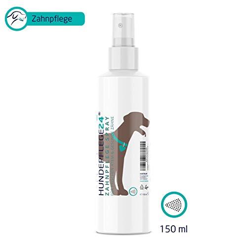 HUNDEPFLEGE24 - Zahnpflege Dentalspray für Hunde & Katzen - 150ml - 100% Natürliche Zahnpflege, Zahnsteinentferner & gegen Mundgeruch bei Hunden mit Kamille, flüssigem Kalzium & Minze