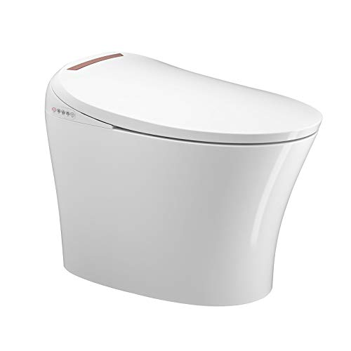 Mecor Intelligent Smart Toilet, Massage Washing, Auto Flush,Heated Seat with Integrated Multi...