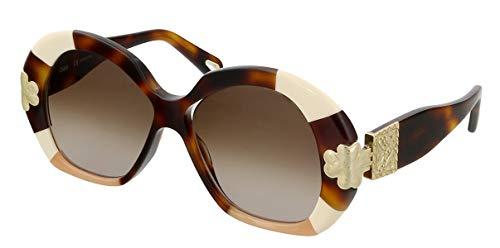Chloé Damen CE743S Sonnenbrille, Havana Patchwork, Einheitsgröße