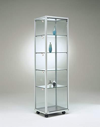 MHN Vitrina de cristal con iluminación estrecha y moderna, con cerradura, 50 x 40 cm, con espejo y ruedas