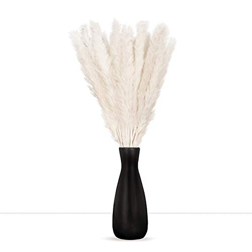 """Flower Decor: Natural Dried Pampas Grass 17"""" (43 cm) - Home Decor Flower Arrangement - Beautifully Decorate House Wedding Office - Perfect for DIY (White)"""