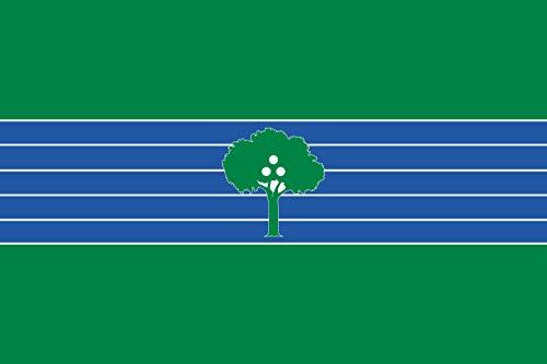 magFlags Bandera Large Abrera   En 1991 se CREA la Bandera Local...
