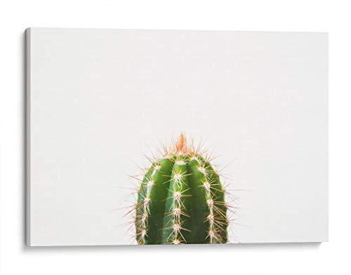 cuadro cactus fabricante Canvas Lab