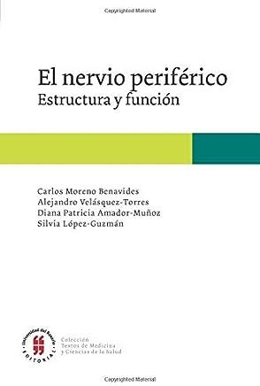 El nervio periférico