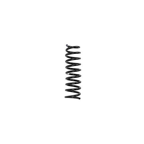 Magnum Technology S00320MT Fahrwerksfeder Schraubenfeder, Spiralfeder, Feder Hinten